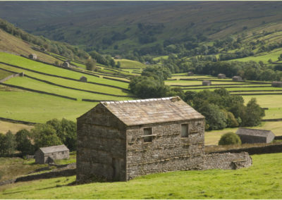 DSC0223 Upper Swaledale Mood North Yorks