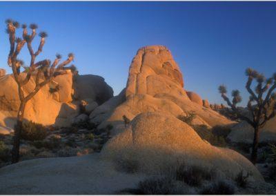 Jumbo Rocks, Joshua Tree NP Utah AV